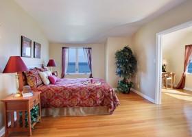 Какие выбрать комнатные растения для спальни?