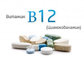 Суточная потребность витамина в6