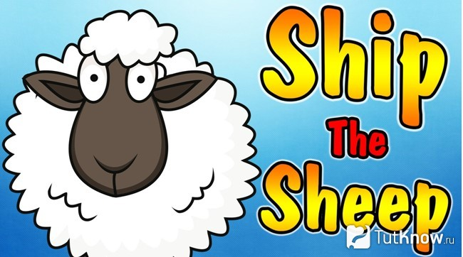 Учебник Ship or Sheep