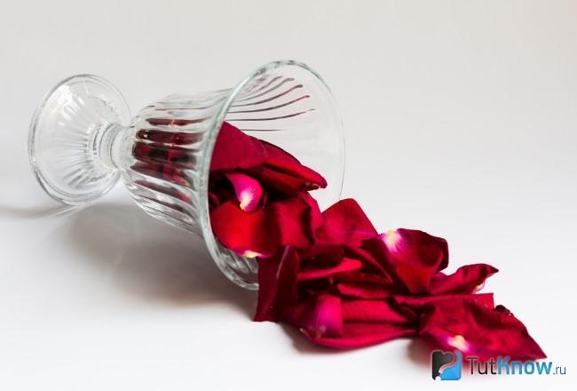 Лепестки розы в стеклянной вазочке