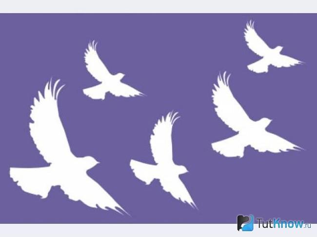 Трафарет для росписи птицами