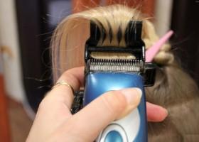 Как сделать термозащиту для волос в домашних условиях отзывы