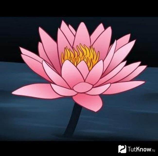 Второй вариант прорисовывания цветка лотоса