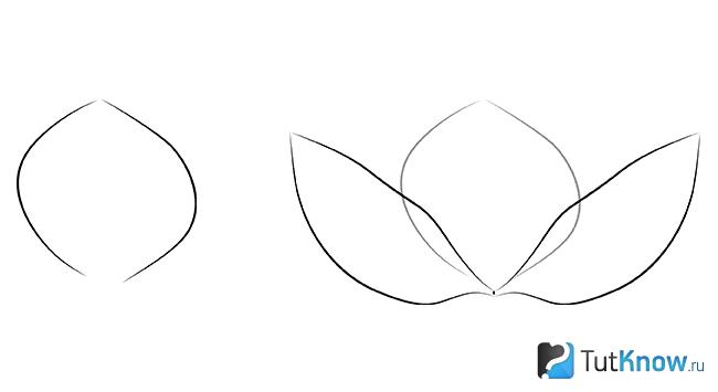 Прорисовка первых элементов лотоса по еще одному методу