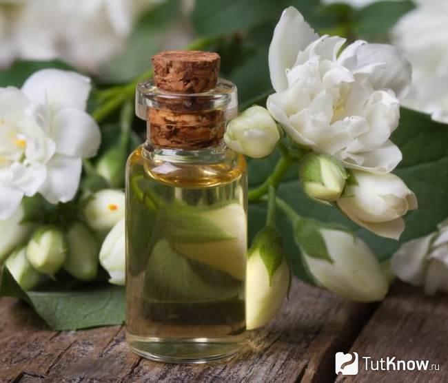 жасмин эфирное масло