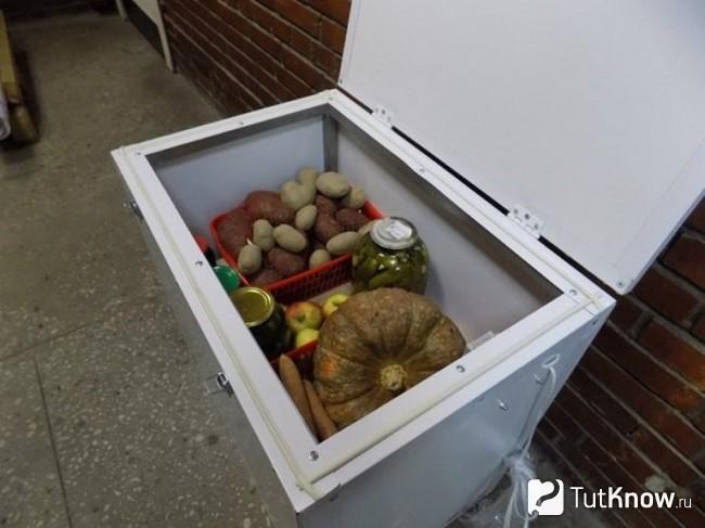 Термокамеры для хранения овощей. эллор.